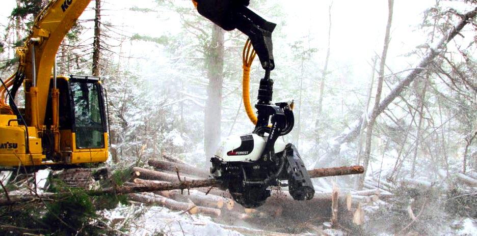 Работа экскаватора харвестера в лесу